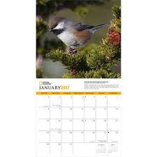 National Geographic Wallpapers 2017 - Wallpaper Cave National Geographic Backyard Guide To The Birds Of North America Field Manakins Photo Gallery Pictures More From Insects And Spiders Twoinone Bird Feeder Store Birds Society Michigan Mel Baughman Blue Jay Picture Desktop Wallpaper Free Wallpapers Pocket The Backyard Naturalist 2017 Cave Wall Calendar