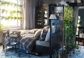 plante verte dans une chambre à coucher visitez nos chambres à coucher