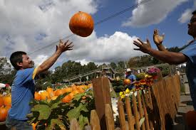 Sunnyside Pumpkin Patch Kansas by Kc This Weekend Mazes Paranormal Trolley Tour Graveyard 5k And