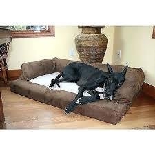 Petco Dog Beds by Petco Extra Large Dog Crate U2013 Futuremedia Me