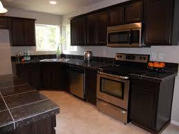 Backsplash Ideas For Dark Cabinets by Backsplash Kitchen Ideas For Dark Cabinets Subway Tile Mirorred