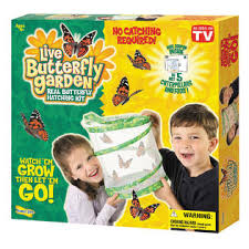 Insect Lore Butterfly Garden with Coupon for Live Caterpillars