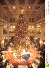 Christmas Tree Shop Freehold Nj by Christmas Trees Store Locations Christmas Lights Decoration
