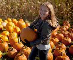 Things To Do On Halloween by Things To Do In Central Mass On Halloween