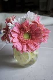 Beautiful And Easy Gerber Daisy Centerpieceswould Be Cute For A Spring Cheap Table