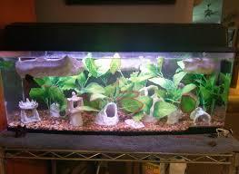 Petco Flower Ball Aquarium Decor by Too Many Silk Plants 292082