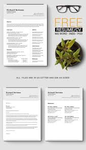 Free Timeless Resume And CV Template In Microsoft Word (DOC ... Kallio Simple Resume Word Template Docx Green Personal Docx Writer Templates Wps Free In Illustrator Ai Format Creative Resume Mplate Word 026 Ideas Modern In Amazing Joe Crinkley 12 Minimalist Professional Microsoft And Google Download Souvirsenfancexyz 45 Cv Sme Twocolumn Resumgocom Page Resumelate One Commercewordpress Example