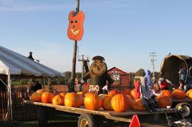 Southeast Wisconsin Pumpkin Patches by Best Pumpkin Patches In Detroit Cbs Detroit