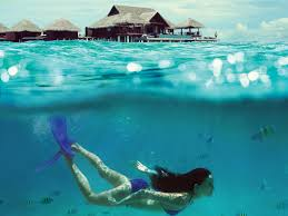 100 Taj Exotica Resort And Spa 5 Exciting Things To Do In The Maldives