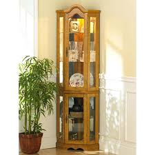 fabulous curio cabinet with lights kitchen room awesome glass