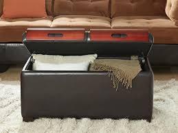 Amazon Convenience Concepts Designs4 fort Storage Ottoman