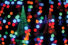 Christmas Tree Shop Erie Pa by Conneaut Lake Light Up U0027tree U0027 Project Gaining Popularity