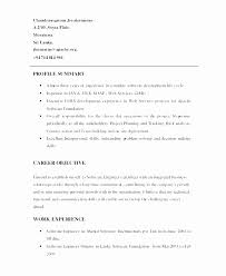 Professional Summaries Resume For 2 Yrs Experience New Example Summary Examples What To