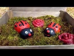 beton diy marienkäfer ladybug selber machen by zement