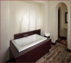 bathtub drain clogged with paint home design ideas