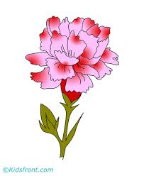 Carnation Coloring Pages For Kids To Color And Print