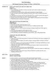 Download Associate Creative Director Resume Sample As Image File