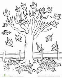 Kindergarten Holidays Seasons Worksheets Maple Tree Coloring Page