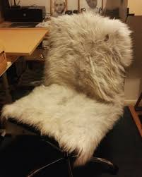 Daniel Davis Sent Us This Picture Of His New Office Chair Cover ... Masque High Back Sheepskin Seat Cover Black Super Soft Faux Sofa Warm Hairy Carpet Pad Throwover Milan Direct Eames Replica Leather Management Office Chair Daniel Davis Sent Us This Picture Of His New Office Chair Cover Universal Non Slip Comfortable Cushion Villsure Rugs Car Pet Waist Slimming Cashmere Covers For Neoteric Armrest Size 1 Pair 15 Long Real Merino Arm Rest To Etsy Fur Ikea Poang Rocking Home Chairs Home Desk Fniture