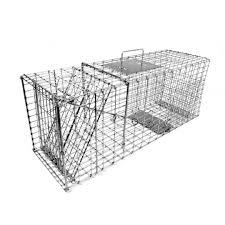 live cat trap tomahawk model 207 collapsible live trap raccoon cat badger