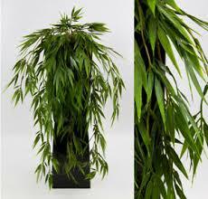 weinrebe deko blumen künstliche pflanzen fürs wohnzimmer