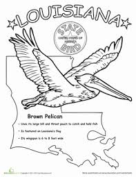 US State Bird Coloring Pages