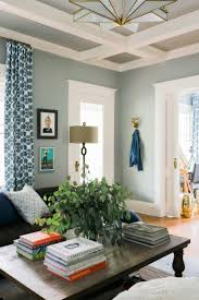 Living Room Ceiling Colors Enchanting Wall Color Ideas