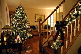 Fraser Christmas Trees Uk by All About Christmas Trees Onefold Uk