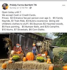 Pumpkin Patch Memphis Tennessee by Priddy Farms 27 Photos Venues U0026 Event Spaces 4595 N