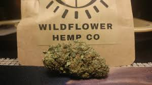 15% COUPON CODE] Suver Haze Hemp Strain Review Wildflower Hemp Co ... Pob Spring Cleaning Sale 20 Off All Catalog Items Through March 27 California Found February 2018 Subscription Box Review Coupon Eden Brothers Seed Company 15 Color Based Mixes Milled Wildflower Apparel And Co Coupons Promo Discount Codes Serenbe Playhouse The Meadow Tickets Coupons 3 For 2 Wedding Clipart Marriage Words Clip Art Save The Date I Love You Mr Mrs Thank Handdrawn Digital Seafoam Flower Pink Shabby Chic Digitally Hand Drawn For Invitations Valentines Day Vtagepink Purchase David Tutera Personalized Foil Clear Case Cover Milkyway Nature Hills Coupon Code Wdst Restaurant Deals For Pandora Wildflower Murano Charm Af682 30642 Cbd And Thc Soap Vaporizers Capsules