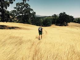 Morgan Hill California Pumpkin Patch by 9 Best The Granada Theater Of Morgan Hill Ca Images On Pinterest
