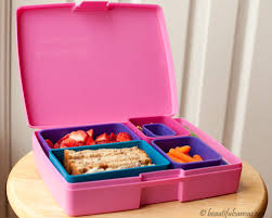 Laptop Lunchbox BeautifulCanvasorg