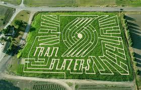 Sauvies Island Pumpkin Patch Corn Maze by Find Corn Mazes In Portland Oregon The Original Maze In Portland
