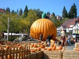 Best Pumpkin Patch In San Bernardino County by Pumpkin Patch At Lake Arrowhead Village October 10 November 2 2008