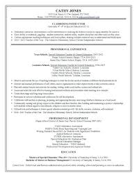 Ses Resume Sample Examples 5 Page