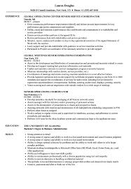 Download Senior Operations Coordinator Resume Sample As Image File