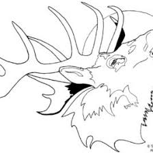 Easy To Make Coloring Pages Draw A Deer Colouring Page