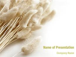Dry Plants PowerPoint Templates
