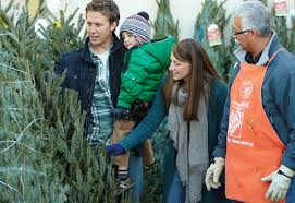 Types Of Christmas Trees To Plant by Types Of Real Christmas Trees The Home Depot
