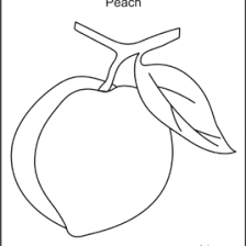 Peach Fruit With Tree And Branch Coloring Page Fruits Pictures
