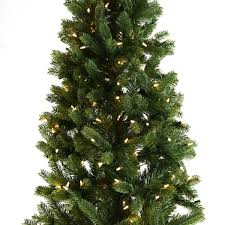 Pre Lit Pencil Christmas Trees Uk by Pre Lit Green Bayberry Spruce Artificial Real Feel Pe Pencil