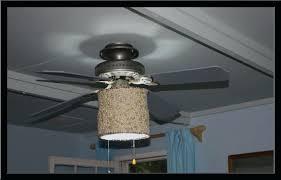 ceiling fan image of ceiling fan globes ideasceiling shades