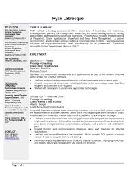 100 Resume Summary Examples Entry Level Data Analyst Unique Business Of