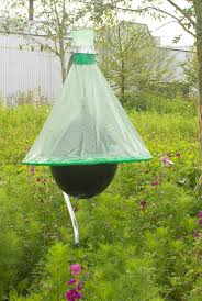 16 Best H-Trap. The New Professional Horsefly Control System ... Defeat The Enemy Fly Control Options For Horse And Barn Music Calms Horses Emotional State The 1 Resource Breyer Crazy In At Schneider Saddlery Horsedvm Controlling Populations Around Oftforgotten Bot Equine Dry Lot Shelter Size Recommendations Successful Boarding Your Expert Advice On Horse 407 Best Barns Images Pinterest Dream Barn Barns A Management Necessity Owners Beat Barnsour Blues Care Predator Wasps Farm Boost Flycontrol Strategies Howto English Riders