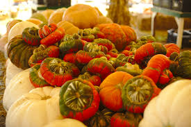 Carmichaels Pumpkin Patch Oklahoma by 365 Search Results Daniellehuddlestonphotography Com