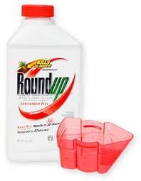 Roundup Weed Grass Killer Concentrate Plus 7018350050