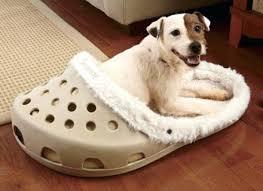 Coolaroo Dog Bed Large by K Ballistic Dog Beds Korrectkritterscom