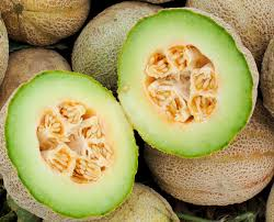 Eden Organic Pumpkin Seeds Where To Buy by Eden Gem Rocky Ford Muskmelon 2 G Southern Exposure Seed