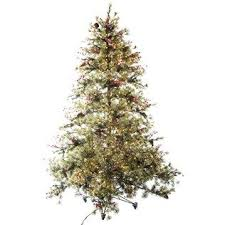 Tall And Full With Interspersed Pinecones Snow Covered Needles And