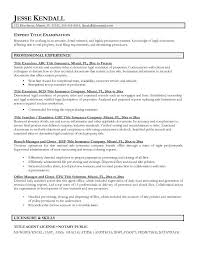 Example Of Resume Title Examples As